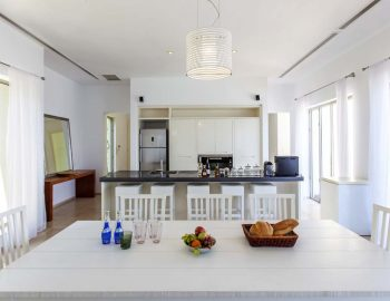 villa-aurora-lefkada-lefkas-afteli-open-living-dining-kitchen-area