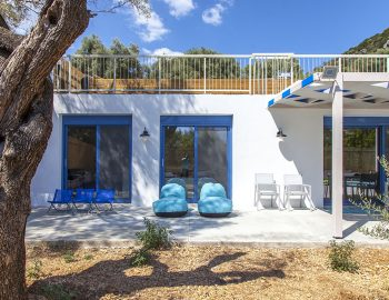 villa-galini-mikros-gialos-lefkada-greece-outdoor-area-with-olive-tree